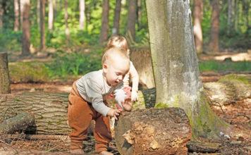 Kinder entdecken die Schätze der Natur. (Foto: Tina Johannes)